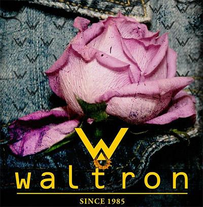 rosa-waltron